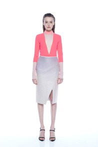 dion-lee-fall-winter-2014-11