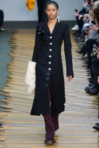 celine-fall-winter-2014-show4
