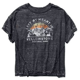 Free-People-Yellowstone-Park-Tee