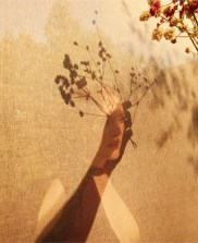 Julianne-Moore-Porter-Magazine-Cover-Photoshoot11