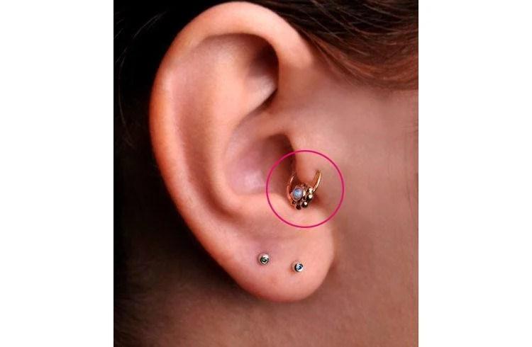 different ear piercings diagram tableau venn getting a cartilage piercing know this first tragus