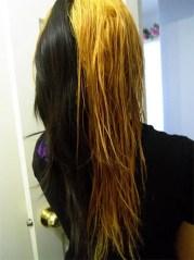 bleaching 101 bleach black