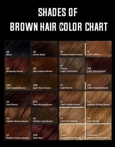 Shades of brown hair color chart min also rh fashionlady