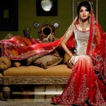 Pakistani Wedding Dresses 2014 For Bridal Pakistani Wedding Dresses 2014 For Bridal Bridal Wear Collection Pakistani Bridal and Wedding Dresses 02
