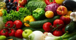 Fresh Vegetables Four Foods Cancer Patients Should Try for a Healthier Four Foods Cancer Patients Should Try for a Healthier Fresh Vegetables