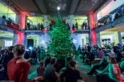 Weihnachstrodeo 2013-2014