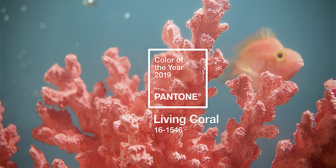 Farbe des Jahres 2019 PANTONE Living Coral