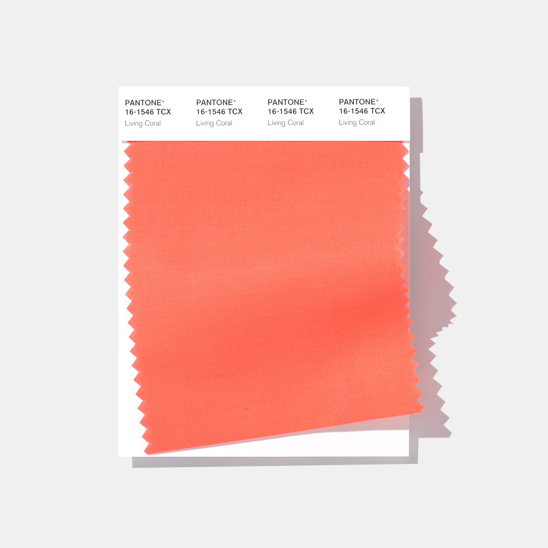 Pantone Color of the Year 2019 PANTONE 161546 Living