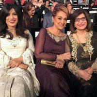 Bushra Ansari in Hum awards