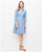 Ann Taylor S15 ShirtDress (4)