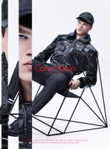 Calvin Klein Collection F15 campaign (2)