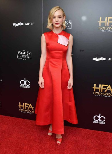BEVERLY HILLS, CA - NOVEMBER 05: Honoree Carey Mulligan poses in the press room during the 21st Annual Hollywood Film Awards at The Beverly Hilton Hotel on November 5, 2017 in Beverly Hills, California. (Photo by Neilson Barnard/Getty Images)