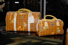 Flower Breeze Travel Bag and Boston