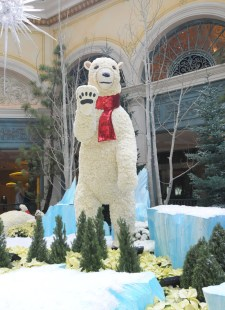 bellagio_polar_bear