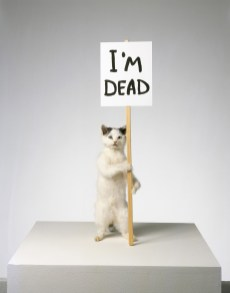 David Shrigley - I'm Dead, 2007
