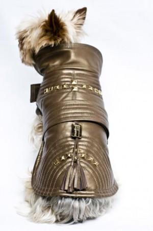 MANDRED OF SWEEDEN Dog coat