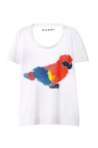 MARNI Saturday Morning T-shirt Parrot