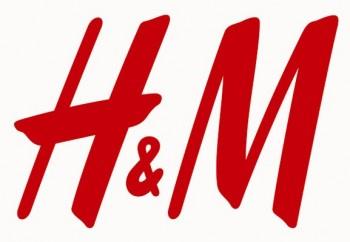 hm logo 577x400