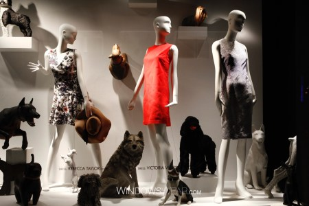 """WindowsWear: Bergdorf Goodman"""