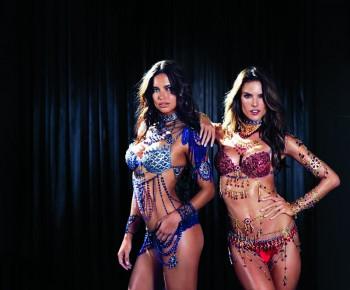 Victorias Secret Fantasy Bra Fit LV (1)
