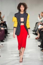 Calvin Klein Collection F17 (14)
