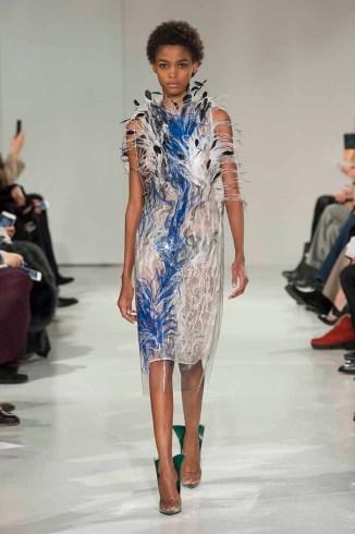 Calvin Klein Collection F17 (52)