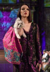Anthony Rubio Pet Couturier