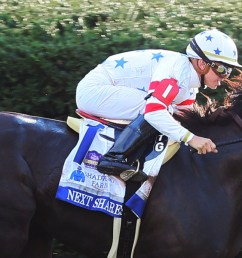 next shares 18 shadwell turf mile october [ 1800 x 600 Pixel ]