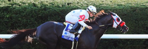 small resolution of next shares 18 shadwell turf mile october