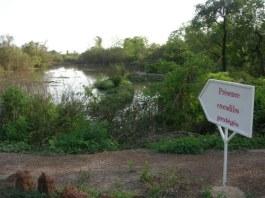 parc-Bangreweogo- Ouagadougou