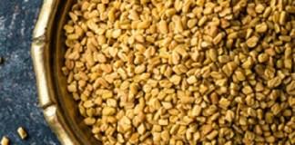 fenugrec-la -graine-brune-à double-effet