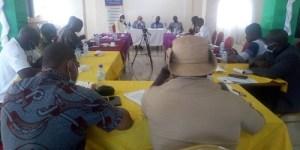 Insertion- socioprofessionnelle –au- Sahel-lambassadeur- de- France- face -aux -journalistes