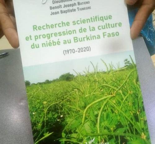 Culture –du- niébé- au- Burkina- Faso- un- nouvel- ouvrage- pour- améliorer- la- production