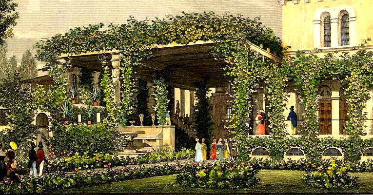 Build And Green A Pergola Yourself