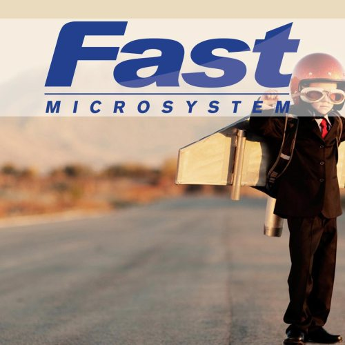 Fast Microsystem 2