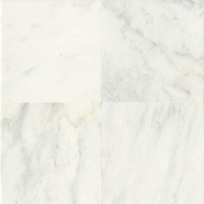 rubber chair feet chairs for tv room daltile marble 12 x 24 polished first snow elegance