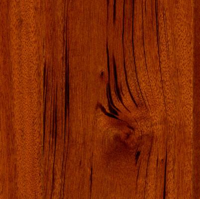 Download Ark Hardwood Floor Installation free