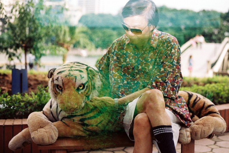 My dad was sitting with a tiger toy in Thu Le zoo, Hanoi, Viet Nam on August, 2013.