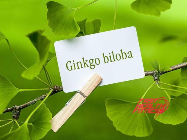ginkgo-biloba-shutterstock