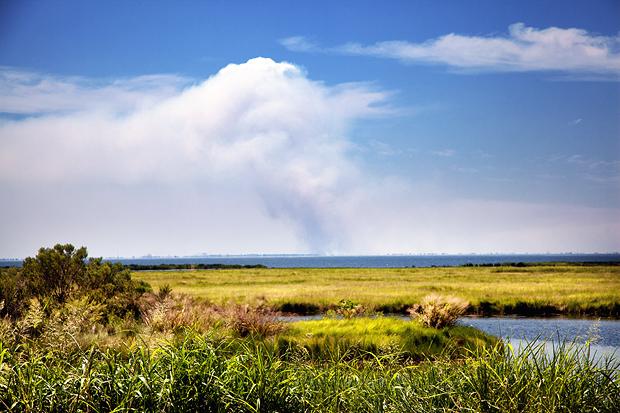 The Marsh Fire