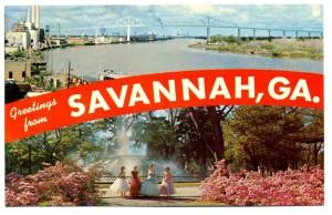 savannah017