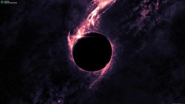 Dark-Black-Hole