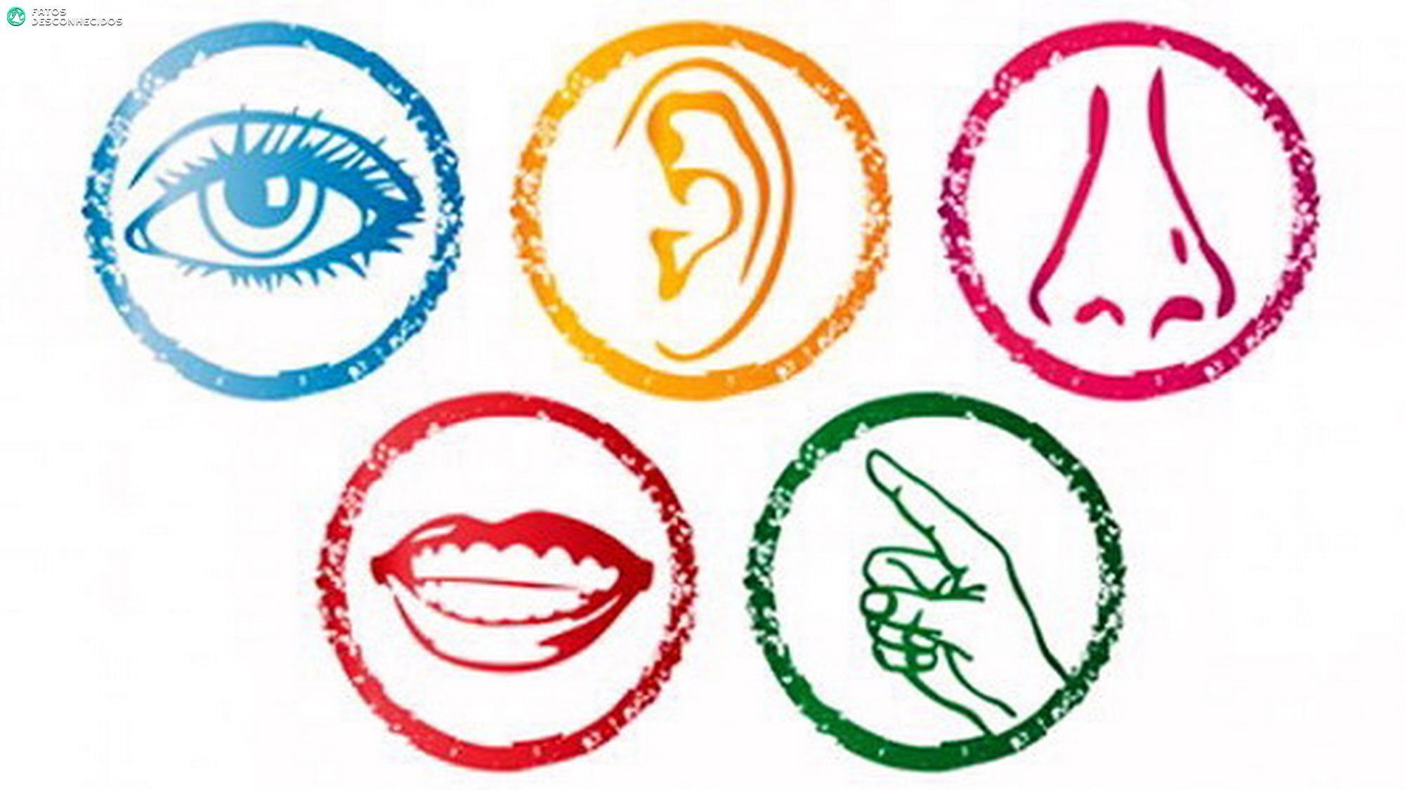 Quebrando mitos: todos temos mais de 5 sentidos