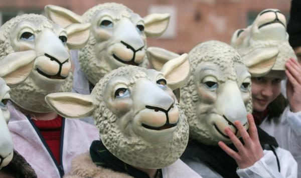 Demonstrators wearing sheep masks demons