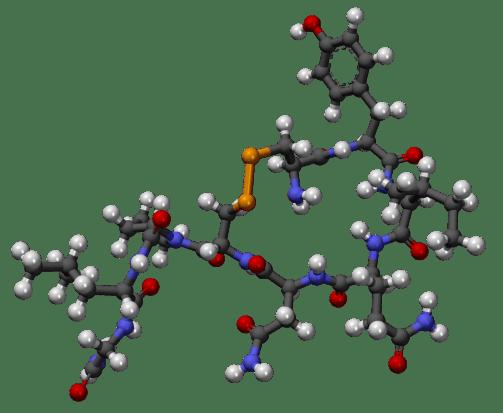1246px-Oxitocina3D