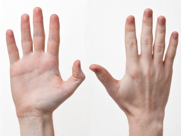 Resultado de imagem para mãos lindas masculinas
