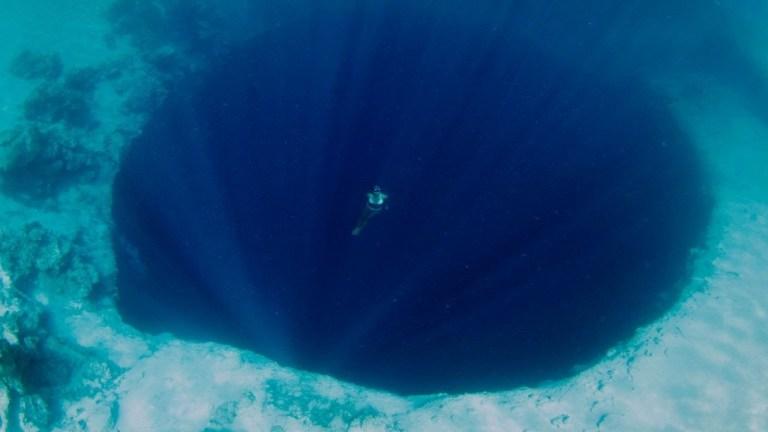 15 imagens que te farão pensar duas vezes antes de entrar no mar