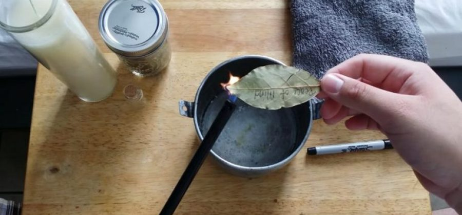 Resultado de imagem para Não imagina o bem que faz queimar folhas de louro em casa!