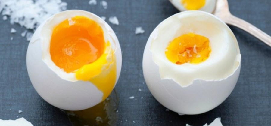 Resultado de imagem para 2 ovos por dia