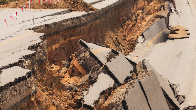 How Can Animals Predict Earthquakes Days Or Weeks In Advance 1498251983, Fatos Desconhecidos